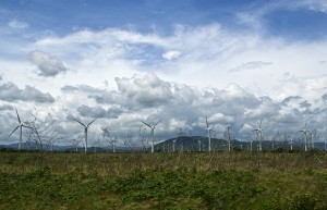 mexico_wind_power