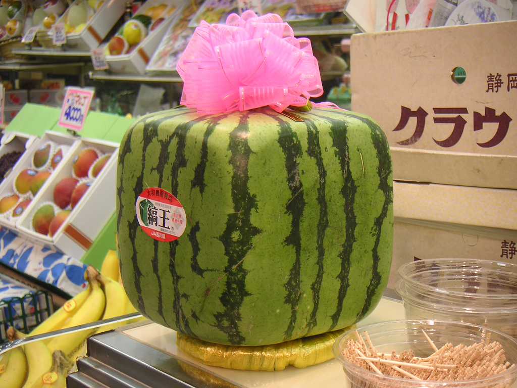 square_watermelon