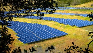 solar-farm1
